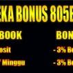 Bonus 805bet